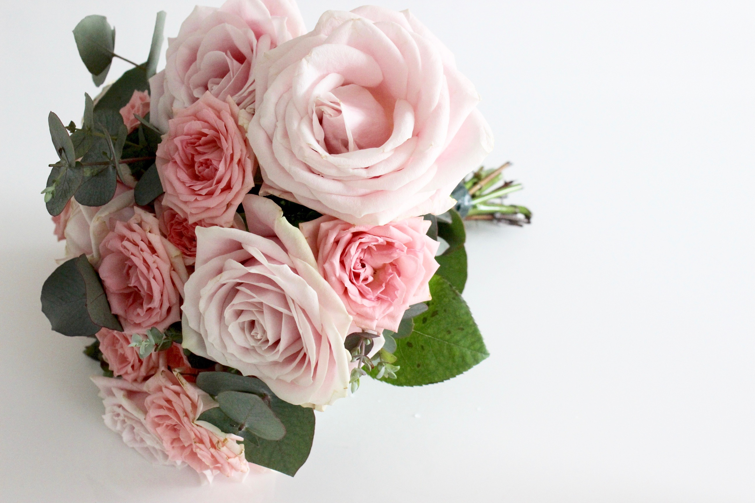 Blog-This-Kind-Of-Girl-5-little-things-Bergamotte-26